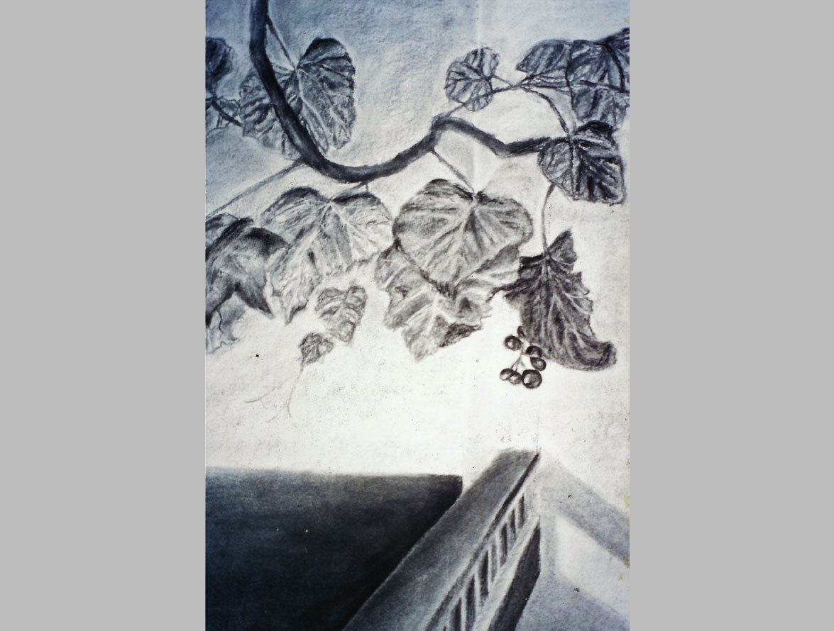 drawing+composition -charcoal